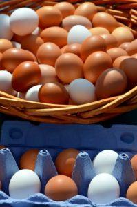 egg 2580929 1920 199x300 - egg-2580929_1920