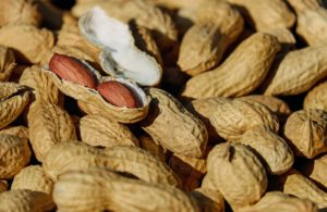 nuts 1736520 1920 300x195 - Αφλατοξίνες και ανθρώπινη υγεία