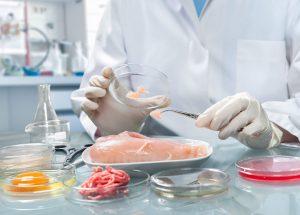 microbiology food 300x215 - microbiology-food