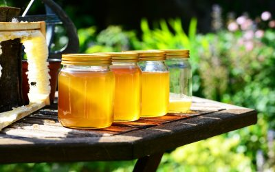 Μέλι και αναλύσεις: Όσα πρέπει να γνωρίζετε