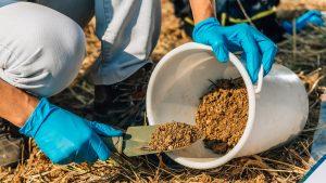 βαρέα μέταλλα στο έδαφος