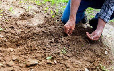 soil analysis 400x250 - ΧΡΗΣΙΜΑ ΑΡΘΡΑ